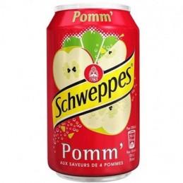Schweppes Pomme 24 x 33cl
